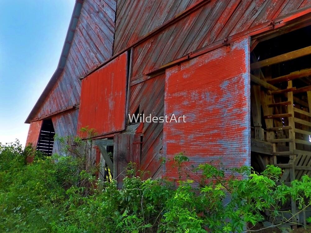 Hargrove's  Barn by WildestArt