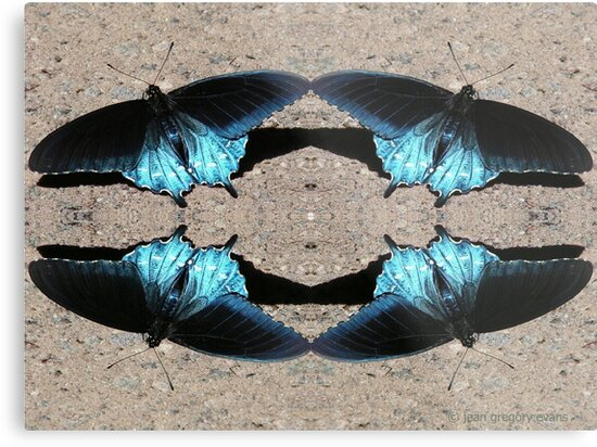 Iridescent Blue Dance by Jean Gregory  Evans