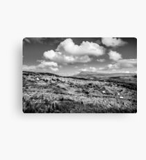 Donegal Scene Canvas Print