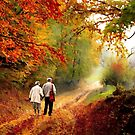 Autumn Walk II by David Dehner