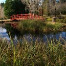 The Red Bridge - Mount Wilson NSW - The HDR Experience by Philip Johnson