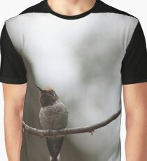 The best of the newest hummingbirds 9-16-2015 Graphic T-Shirt