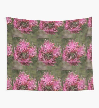 Isopogon formosus Wall Tapestry