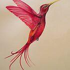 Hummingbird by WhiteSpirits