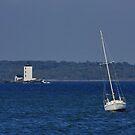I am sailing !! (see large) by AnnDixon
