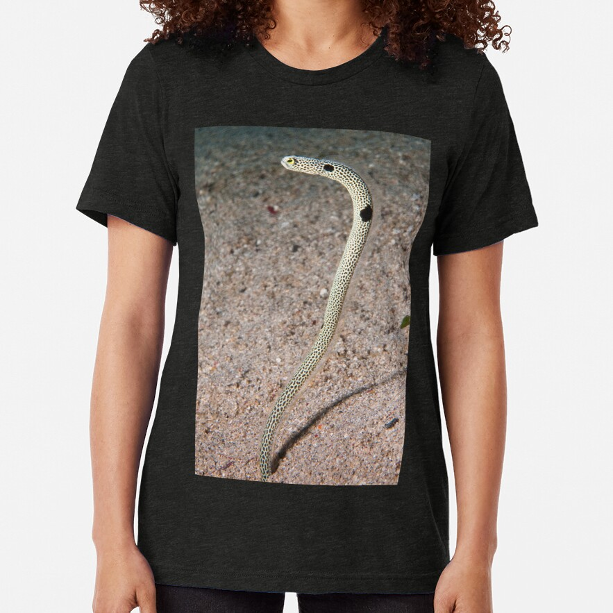 Spotted Garden Eel, North Sulawesi, Indonesia Tri-blend T-Shirt
