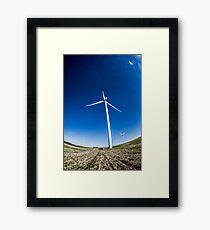 SL-WEEK 13: Ecology Framed Print