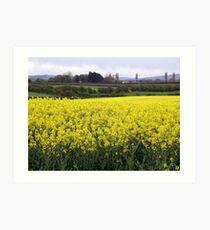 Yellow dance of Nature - Limavady County Derry Ireland Art Print