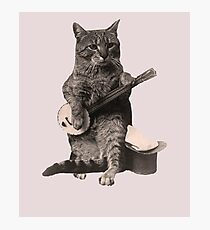 Cat Playing Banjo Guitar Photographic Print