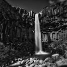 Svartifoss by anorth7