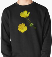 Buttercup Pullover