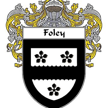 Foley Coat of Arms/Family Crest by IrishArms