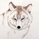 Snow Wolf by Mark Calderwood