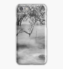 Mangroves at Town Beach, Broome, Western Australia iPhone Case/Skin