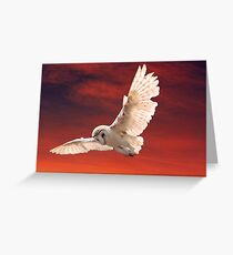 Prey Spotted Greeting Card