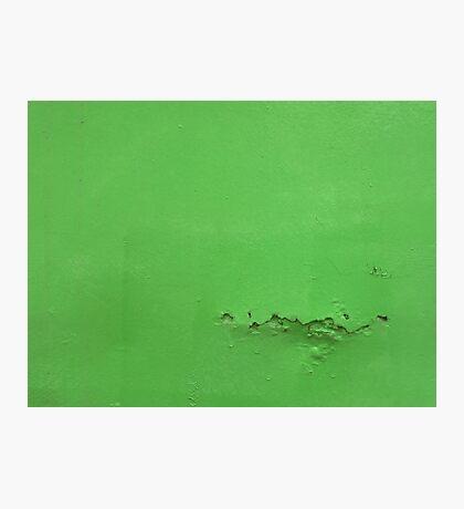Say something green  Photographic Print