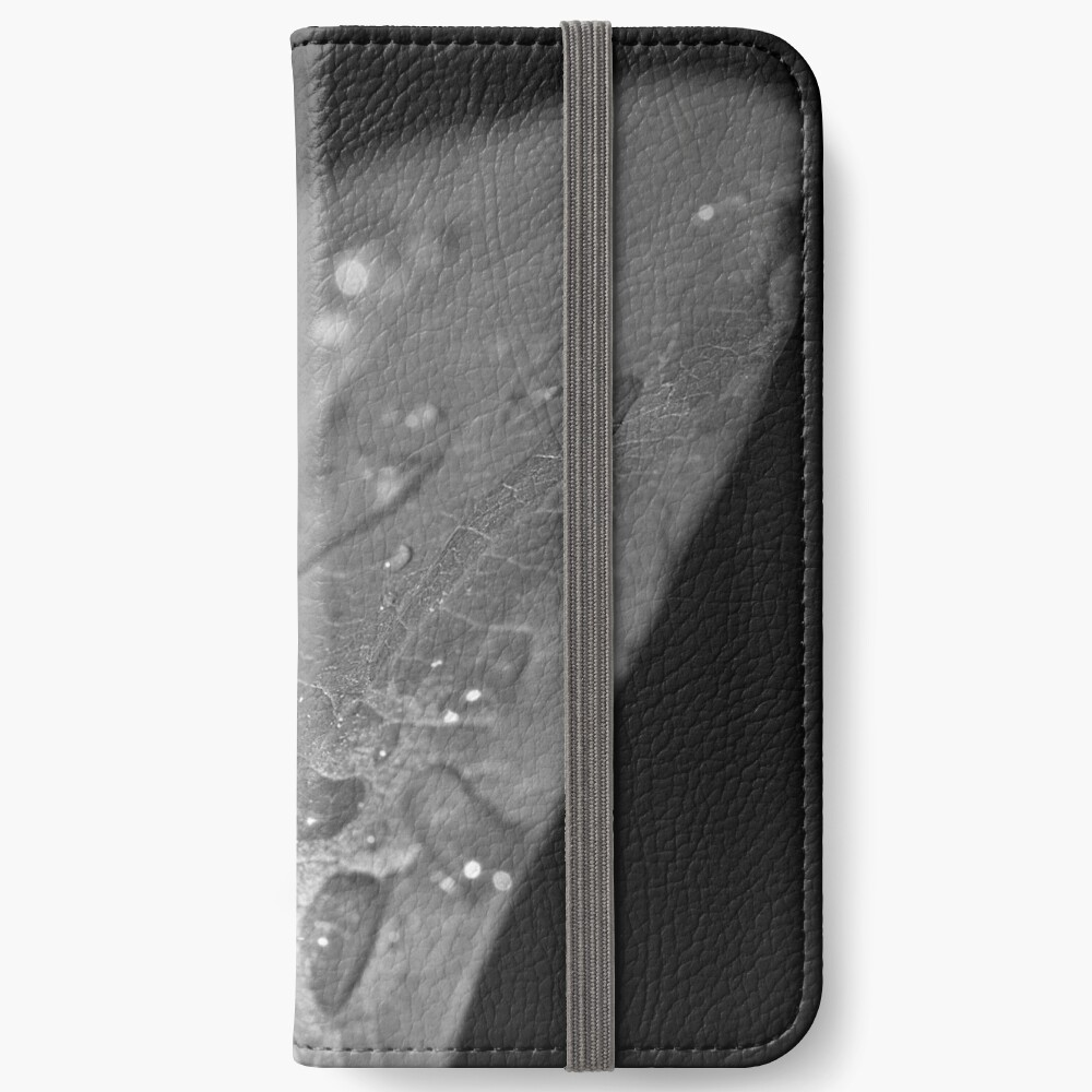 the spirited interlude iPhone Flip-Case
