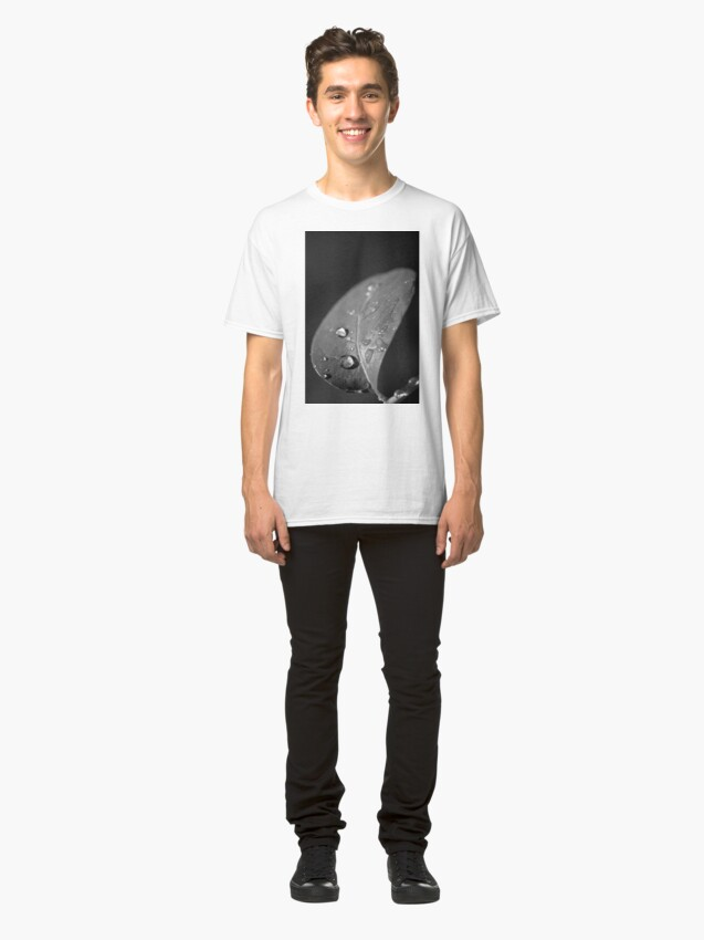Alternative Ansicht von the spirited interlude Classic T-Shirt