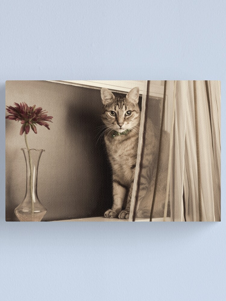 Alternate view of Curtain Call Canvas Print