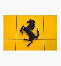 Ferrari  Photographic Print