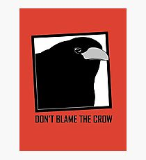 DON'T BLAME THE CROW Photographic Print