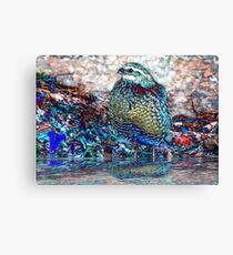 22. Let's Go Wading Canvas Print