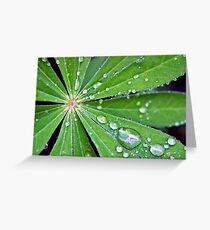 Lupin Leaf Greeting Card