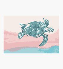 Pastel Turtle Photographic Print