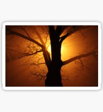 Abstract Sunset with Tree  Beautiful Nature Sticker