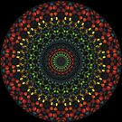 «Lit Up Mandala» de EcoRidge