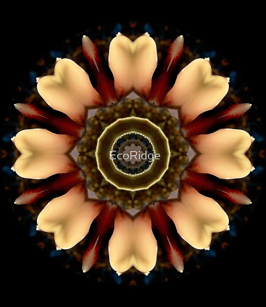 «Lupin Glow Mandala» de EcoRidge