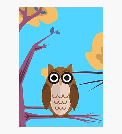The Wise Owl Photographic Print