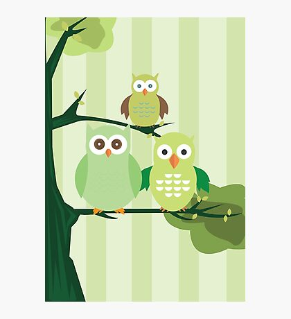 Green Owls Photographic Print