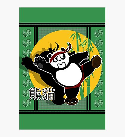 Martial Arts Panda - Green Photographic Print