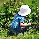 working in the garden by wendywoo1972