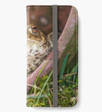 Common Toad iPhone Wallet