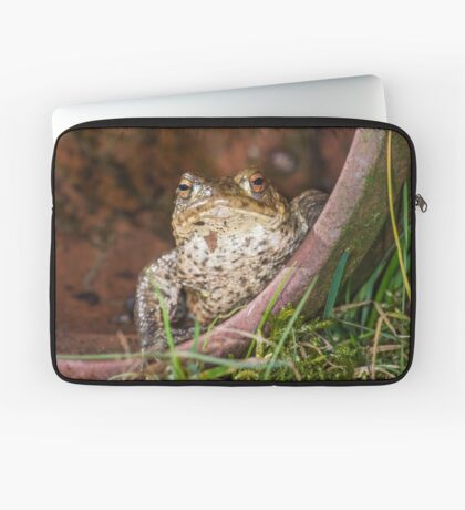 Common Toad Laptop Sleeve
