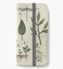 Natural History - Forest Spirit studies iPhone Wallet/Case/Skin