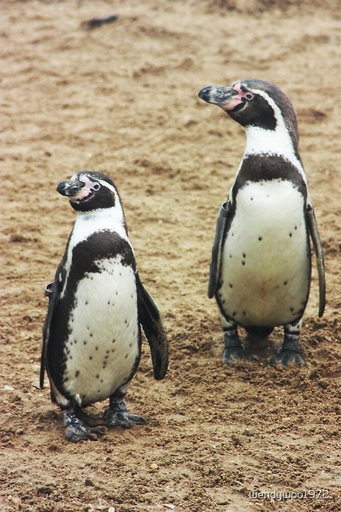 penguins by wendywoo1972