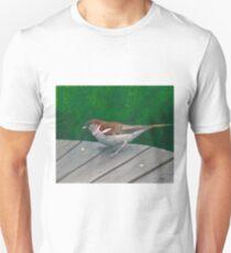 Crumbs T-Shirt