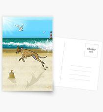 Brindle on the Beach Postcards