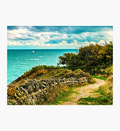 Durlston Hall Country Park View Photographic Print