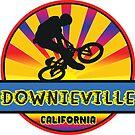 MOUNTAIN BIKE DOWNIEVILLE CALIFORNIA BIKING MOUNTAINS by MyHandmadeSigns