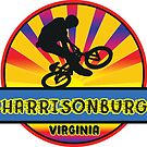 MOUNTAIN BIKE HARRISONBURG VIRGINIA BIKING MOUNTAINS by MyHandmadeSigns