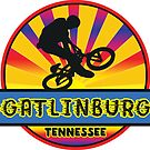 MOUNTAIN BIKE GATLINBURG TENNESSEE BIKING MOUNTAINS by MyHandmadeSigns