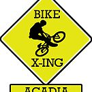 MOUNTAIN BIKE ACADIA MAINE BIKE XING CROSSING BIKING MOUNTAINS by MyHandmadeSigns