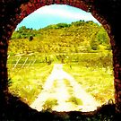 Pieve di Tho: tunnel with country landscape by Giuseppe Cocco