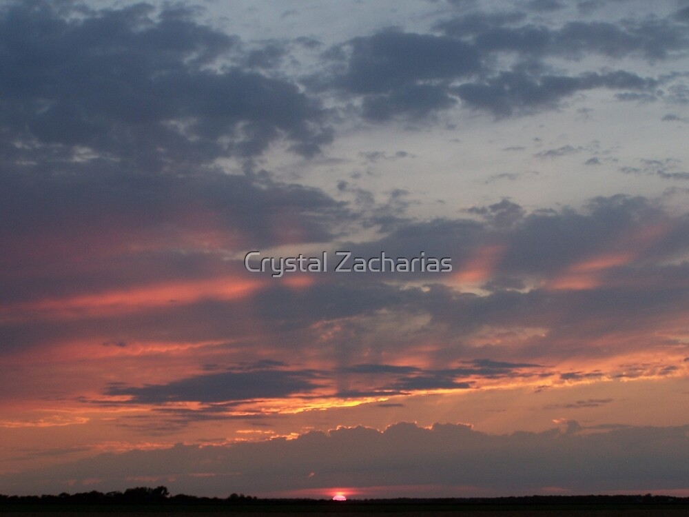 Rays of Sunshine by Crystal Zacharias