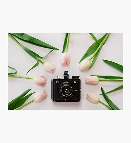 Six-20 Photographic Print
