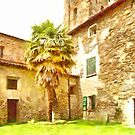 Pieve di Tho: courtyard with palm by Giuseppe Cocco